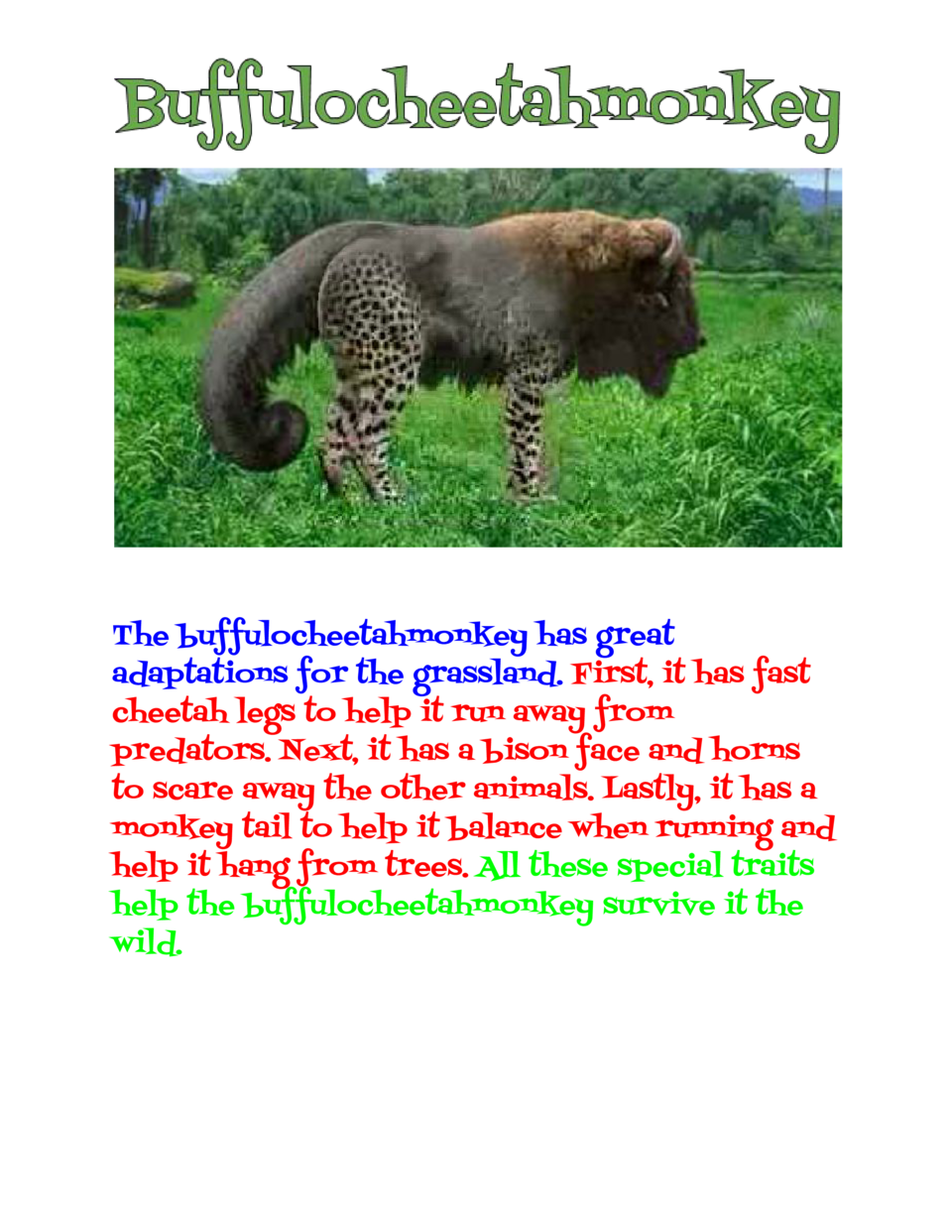 The buffulocheetahmonkey has great adaptations for the grassland.     First, it has fast cheetah legs to hel...