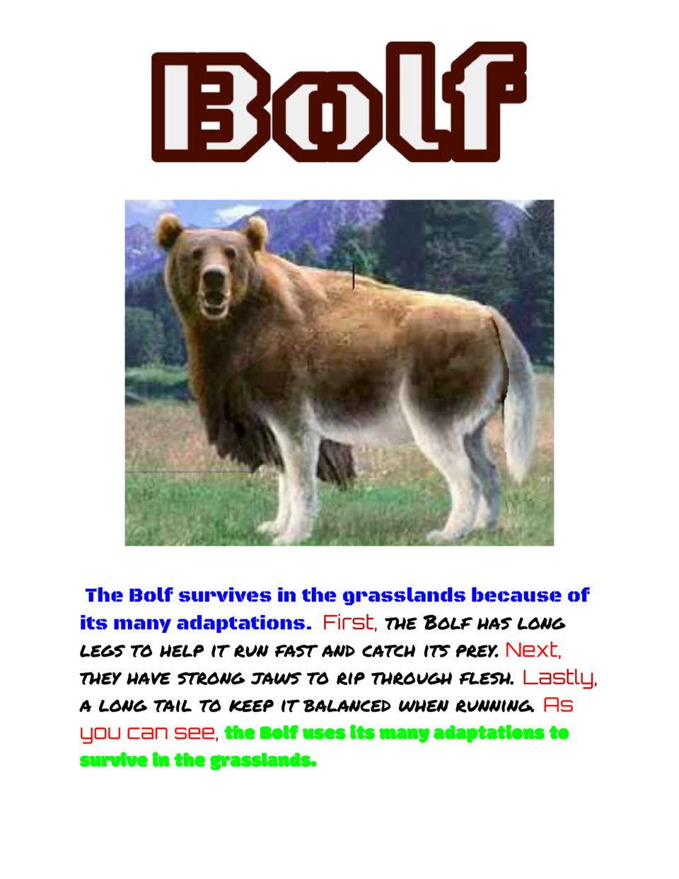 The Bolf survives in the grasslands because of its many adaptations.     First,   he Bolf has long t     legs to help it r...