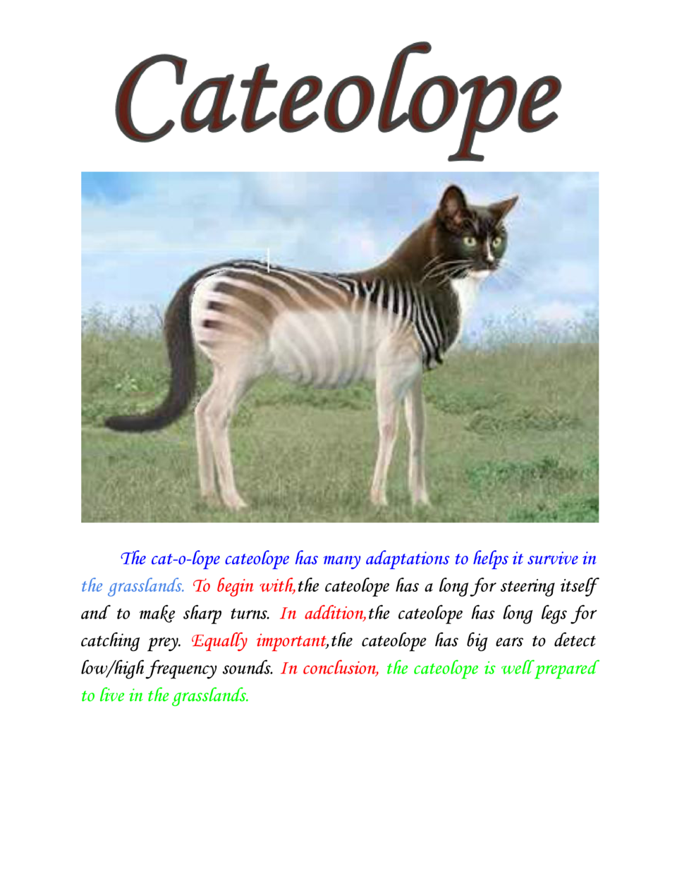 The cat-o-lope cateolope has many adaptations to helps it survive in the grasslands.     begin with,    cateolope h...