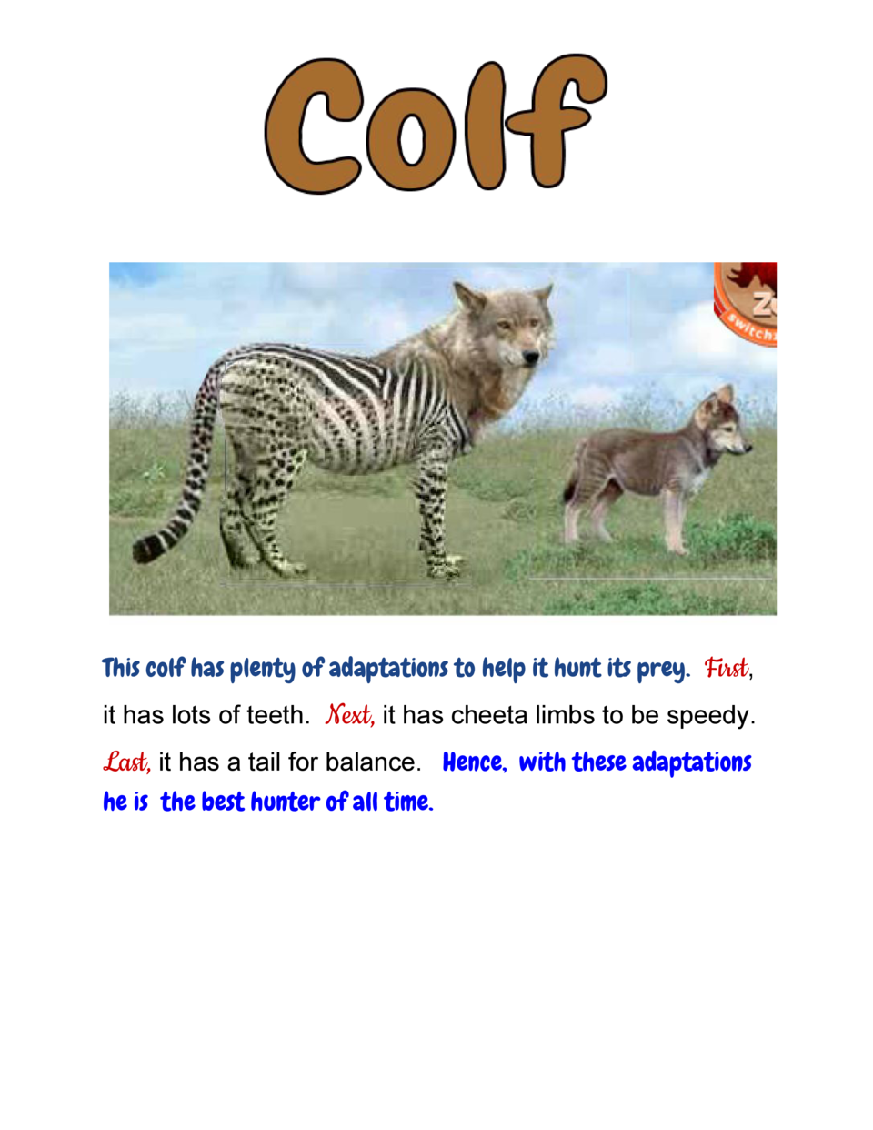 This colf has plenty of adaptations to help it hunt its prey.    irst            ,   F it  has  lots  of  teeth.      ...