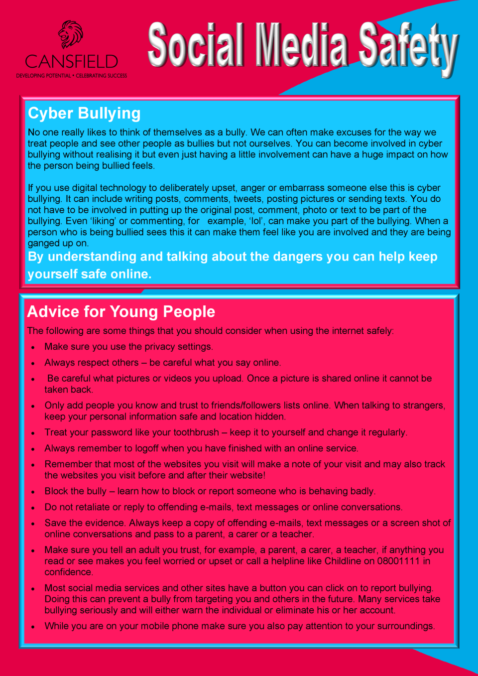 Cyber Bullying No one really likes to think of themselves as a bully. We can often make excuses for the way we treat peopl...