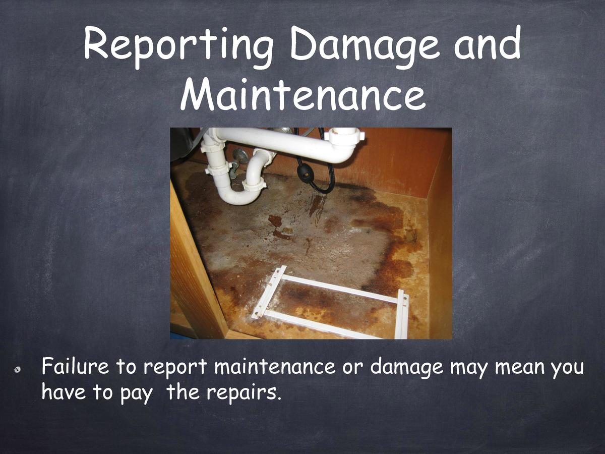 Reporting Damage and Maintenance  Failure to report maintenance or damage may mean you have to pay the repairs.
