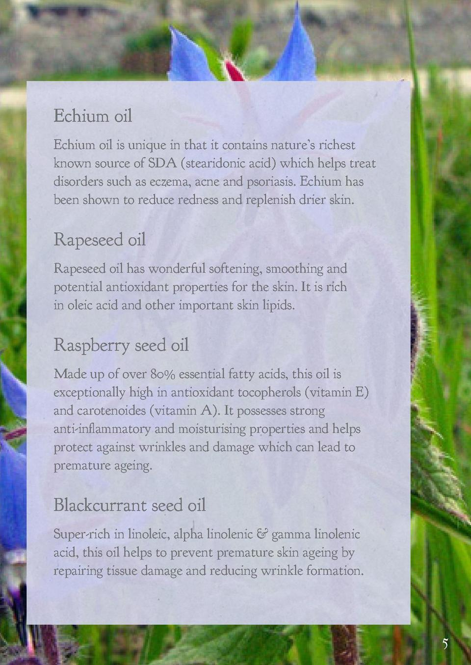 Skin benefits of our British Botanicals Bees love them and we love them as ingredients in our skincare. Some are well-know...