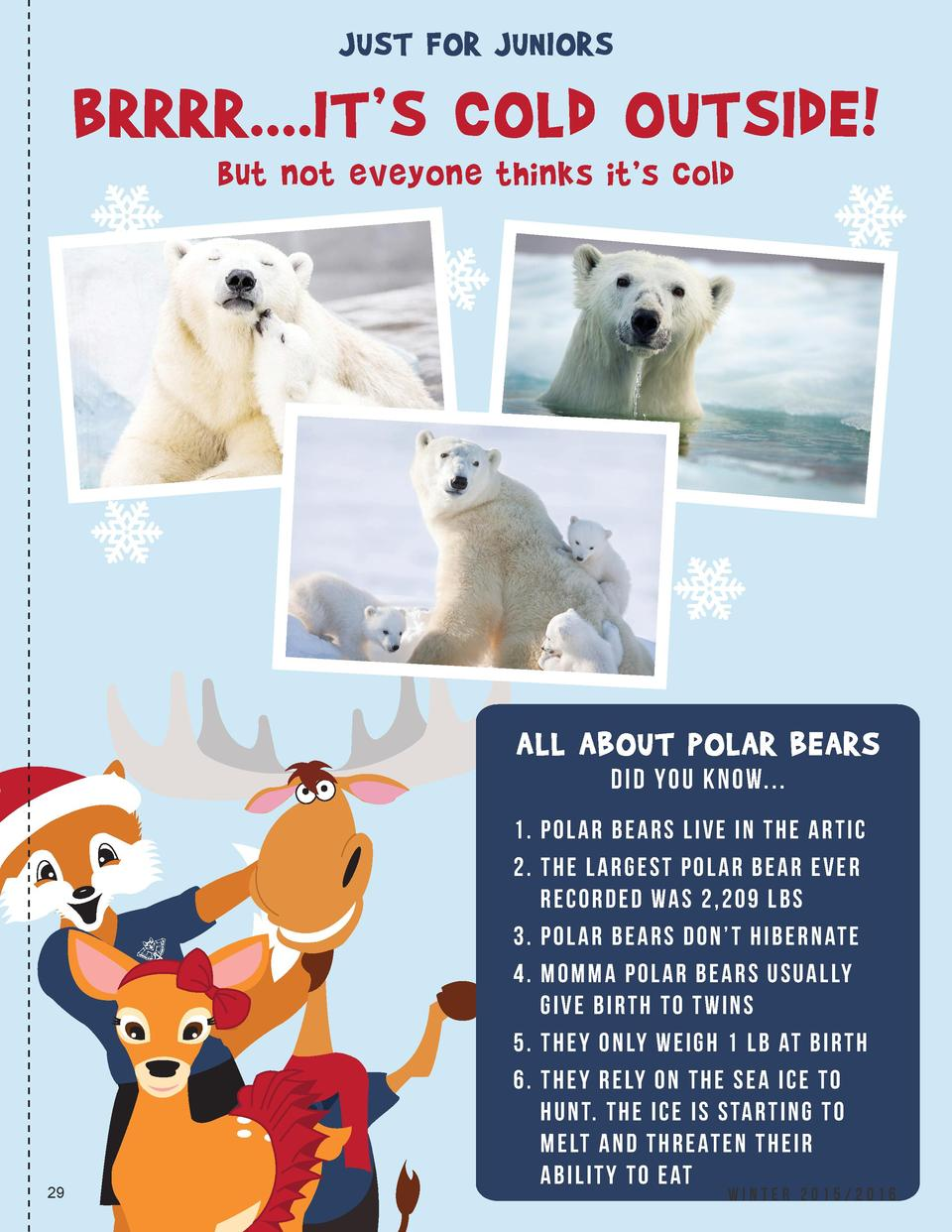JUST FOR JUNIORS  BRRRR....IT   S COLd OUTSIdE  but not eveyone thinks it   s cold  ALL ABOUT POLAR BEARS d I D YO U KNOW....