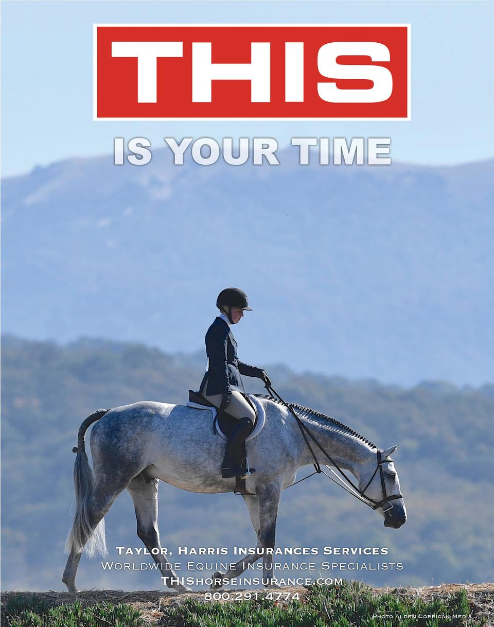 IS YOUR TIME  Taylor, Harris Insurances Services Worldwide Equine Insurance Specialists THIShorseinsurance.com 800.291.477...