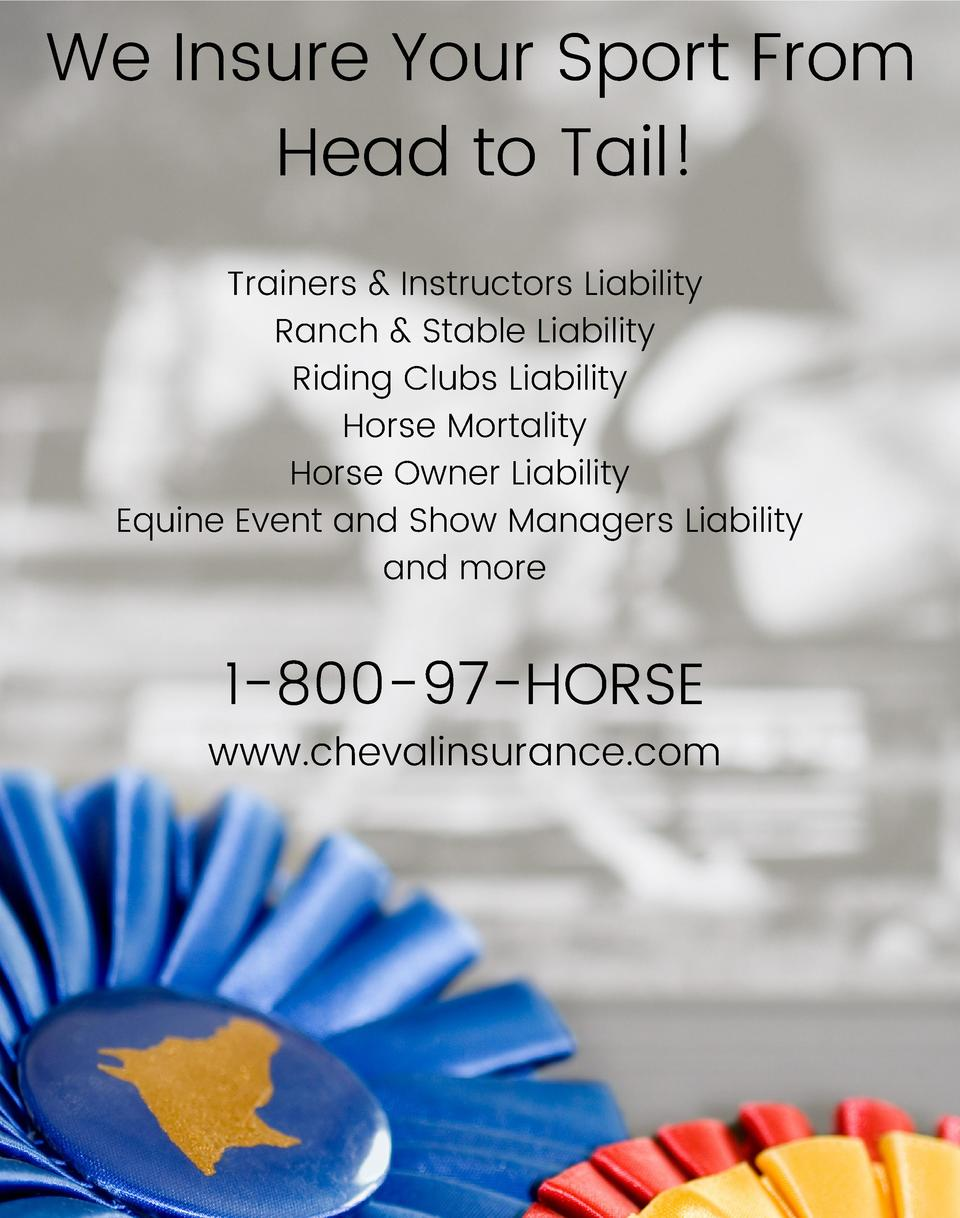 We Insure Your Sport From Head to Tail  Trainers   Instructors Liability Ranch   Stable Liability Riding Clubs Liability H...