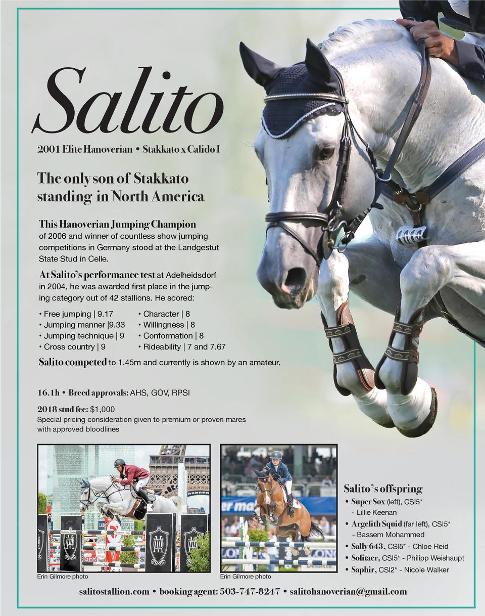 Salito 2001 Elite Hanoverian     Stakkato x Calido I  The only son of Stakkato standing in North America This Hanoverian J...