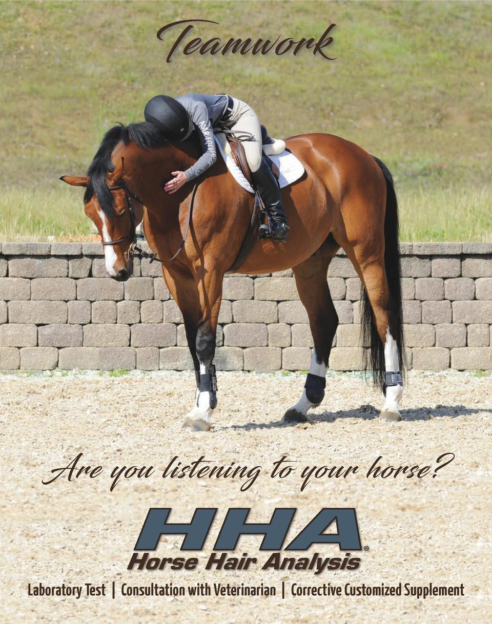 Teamwork  Are you listening to your horse   HHA Horse Hair Analysis      Laboratory Test   Consultation with Veterinarian ...