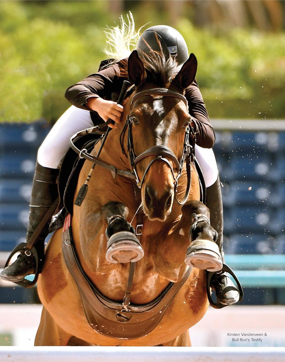 54  TCE  ________________ TheCompetitiveEquestrian  Kirsten Vanderveen   Bull Run   s Testify March April 2018