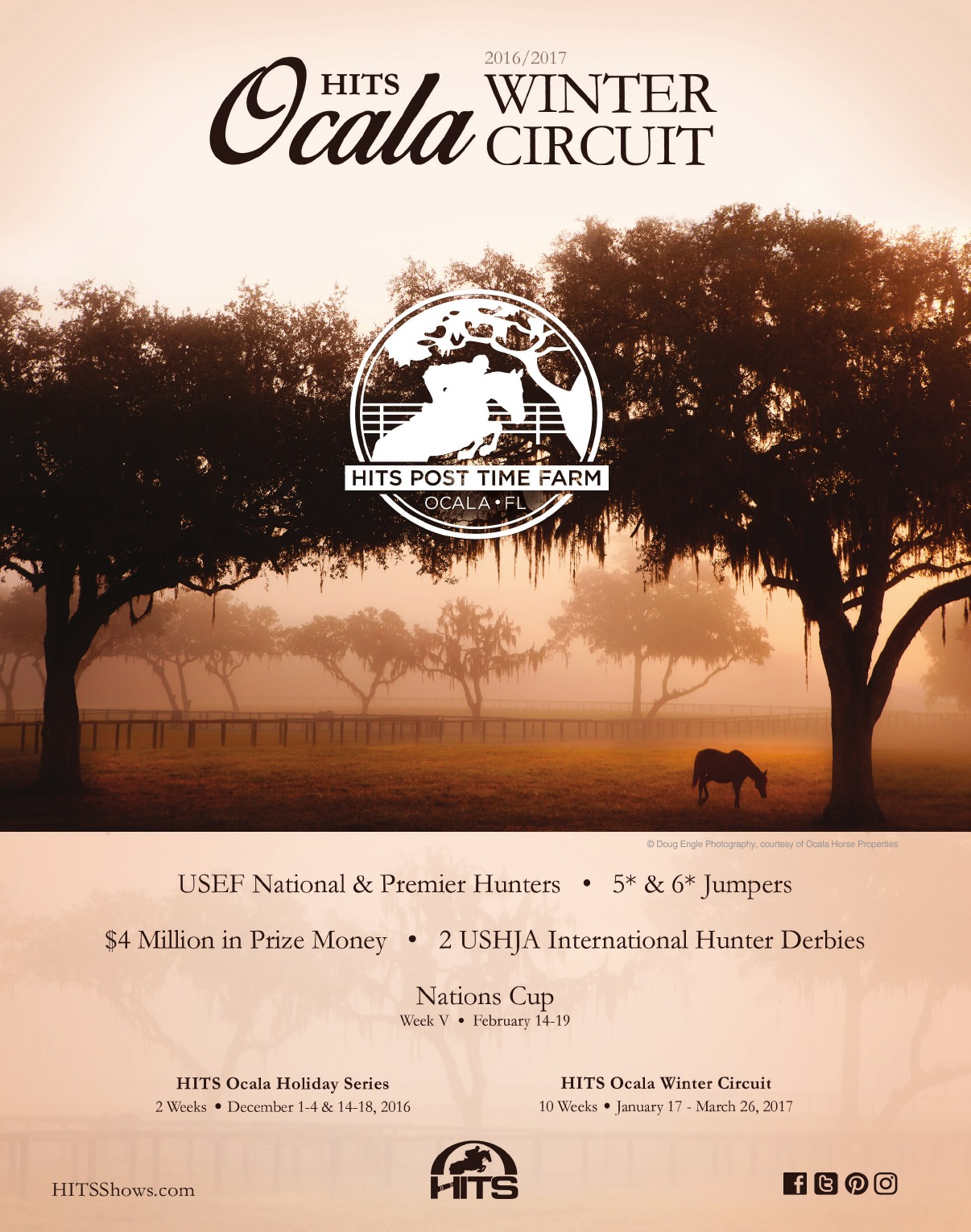 The Competitive Equestrian Nov D Cricket Circuit Round Boar 98 Your Sport November 2016