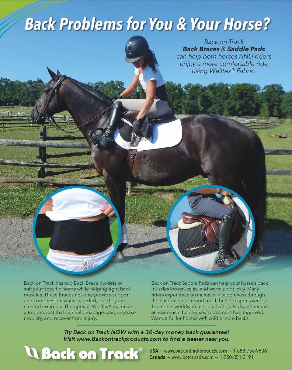 Back Problems for You   Your Horse  Back on Track Back Braces   Saddle Pads can help both horses AND riders enjoy a more c...