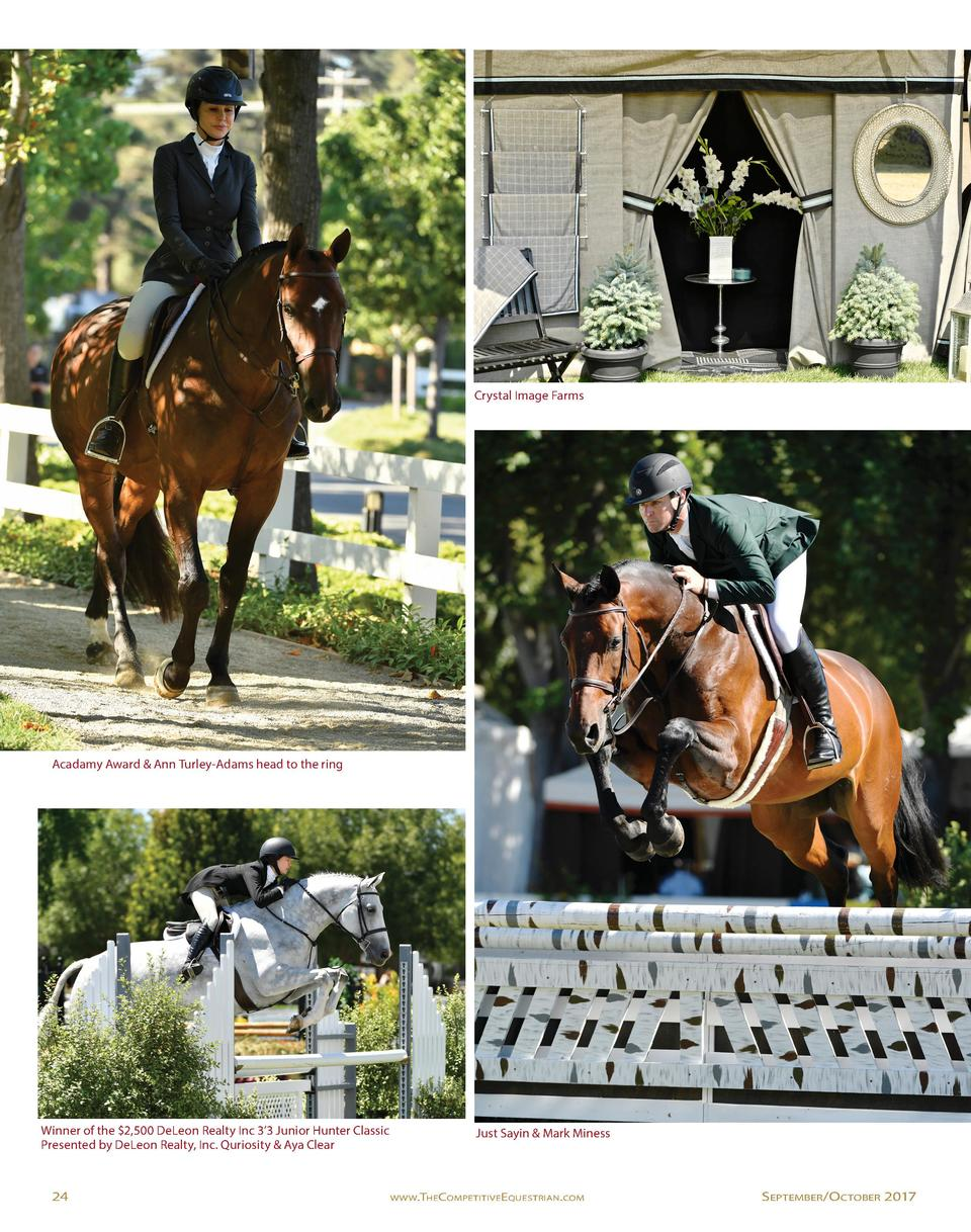 Crystal Image Farms  Acadamy Award   Ann Turley-Adams head to the ring  Winner of the  2,500 DeLeon Realty Inc 3   3 Junio...