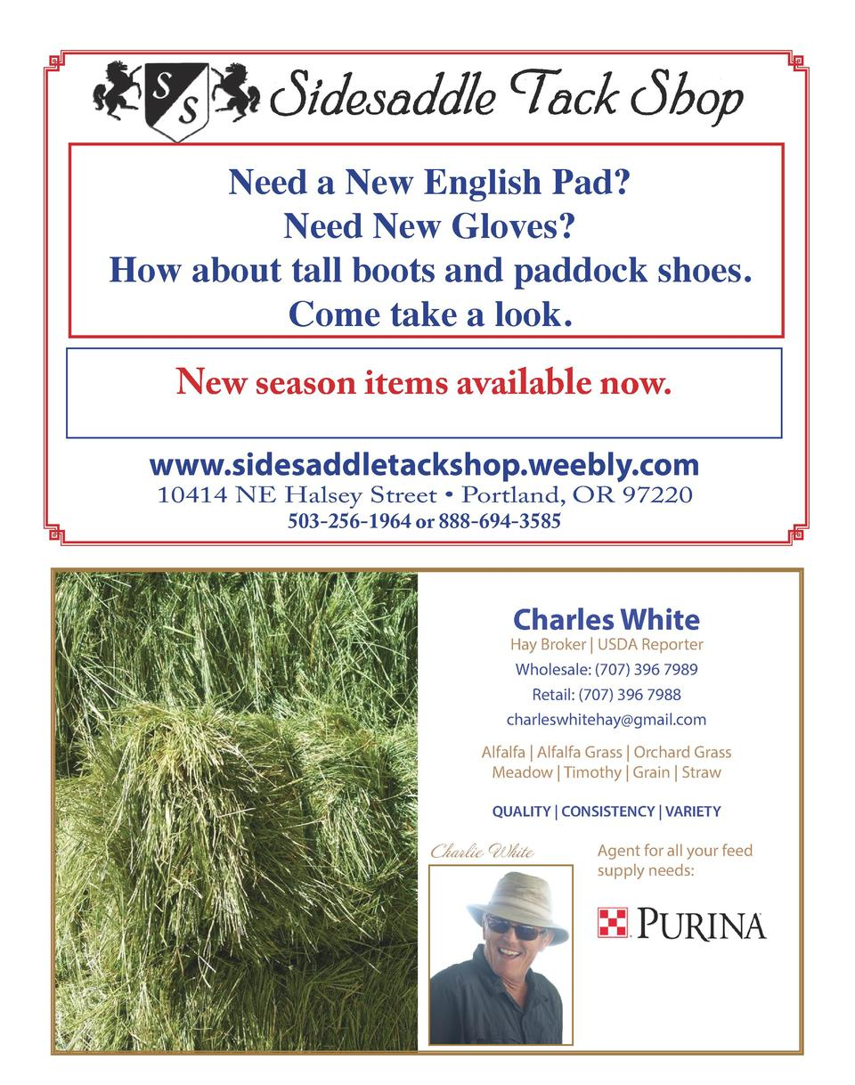 Need a New English Pad  Need New Gloves  How about tall boots and paddock shoes. Come take a look. New season items availa...