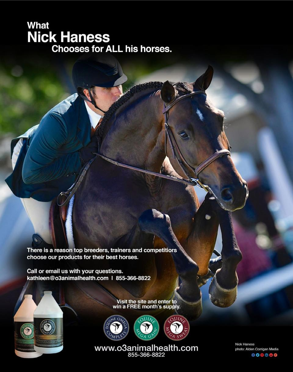 The Competitive Equestrian Novem : simplebooklet com