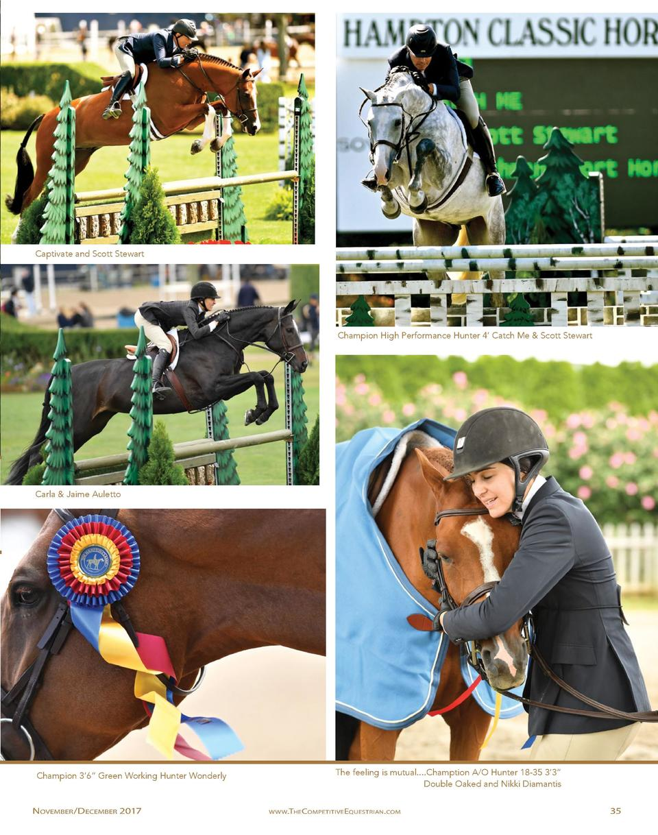 Captivate and Scott Stewart  Champion High Performance Hunter 4    Catch Me   Scott Stewart  Carla   Jaime Auletto  Champi...