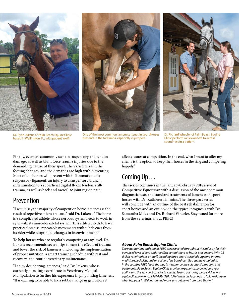 Dr. Ryan Lukens of Palm Beach Equine Clinic based in Wellington, FL, with patient Wolfi  One of the most common lameness i...
