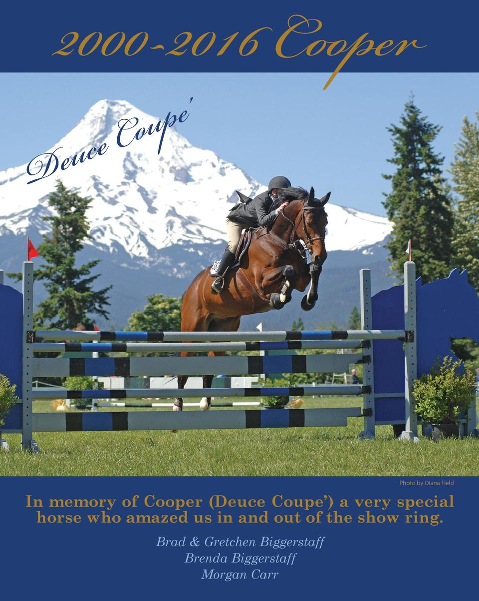 2000-2016 Cooper     pe u o eC  c u e D  Photo by Diana Field  In memory of Cooper  Deuce Coupe     a very special horse w...