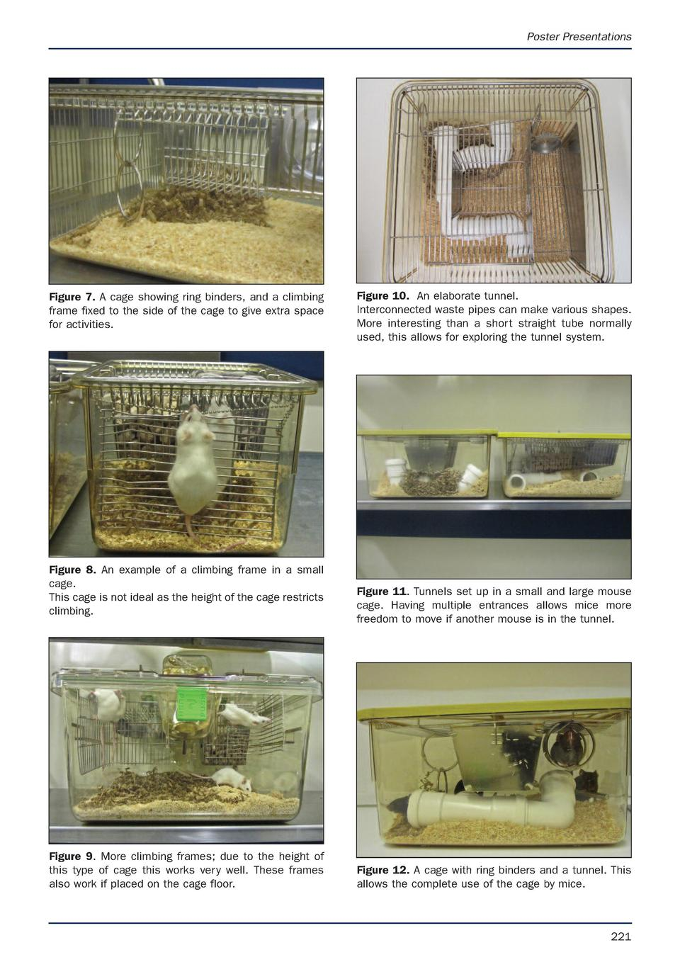 Poster Presentations  Figure 7. A cage showing ring binders, and a climbing frame fixed to the side of the cage to give ex...