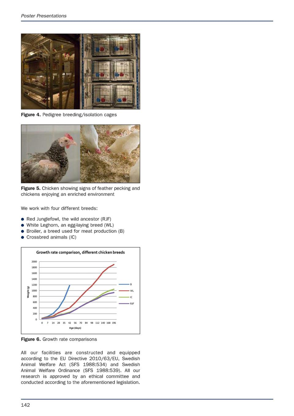 Poster Presentations  Figure 4. Pedigree breeding isolation cages  Figure 5. Chicken showing signs of feather pecking and ...