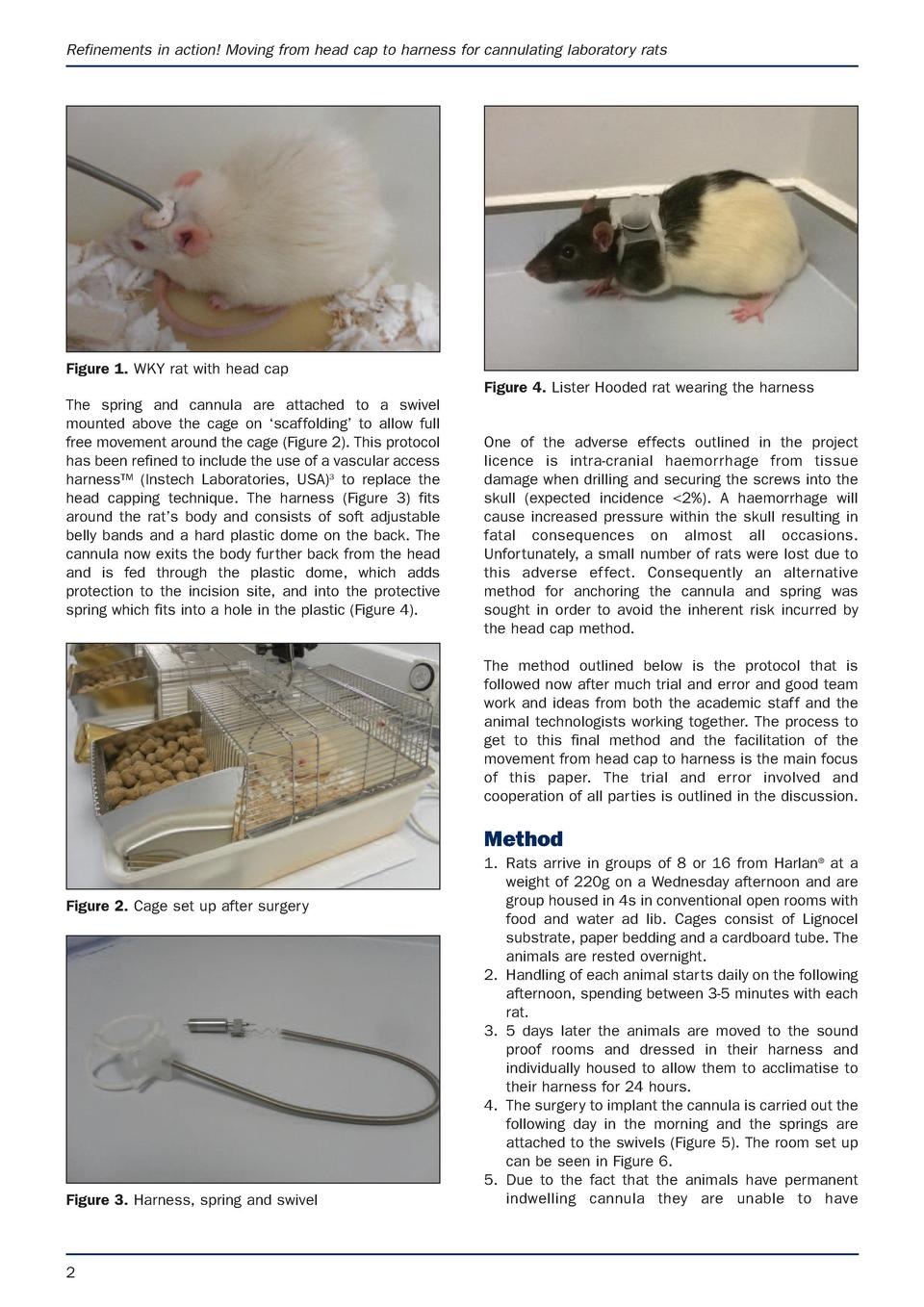 Refinements in action  Moving from head cap to harness for cannulating laboratory rats  Figure 1. WKY rat with head cap Fi...