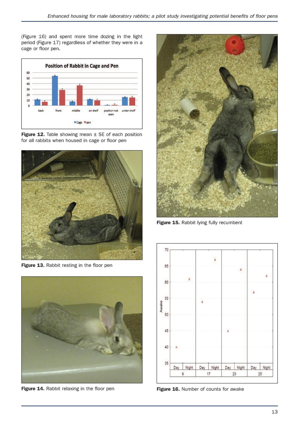 Enhanced housing for male laboratory rabbits  a pilot study investigating potential benefits of floor pens   Figure 16  an...