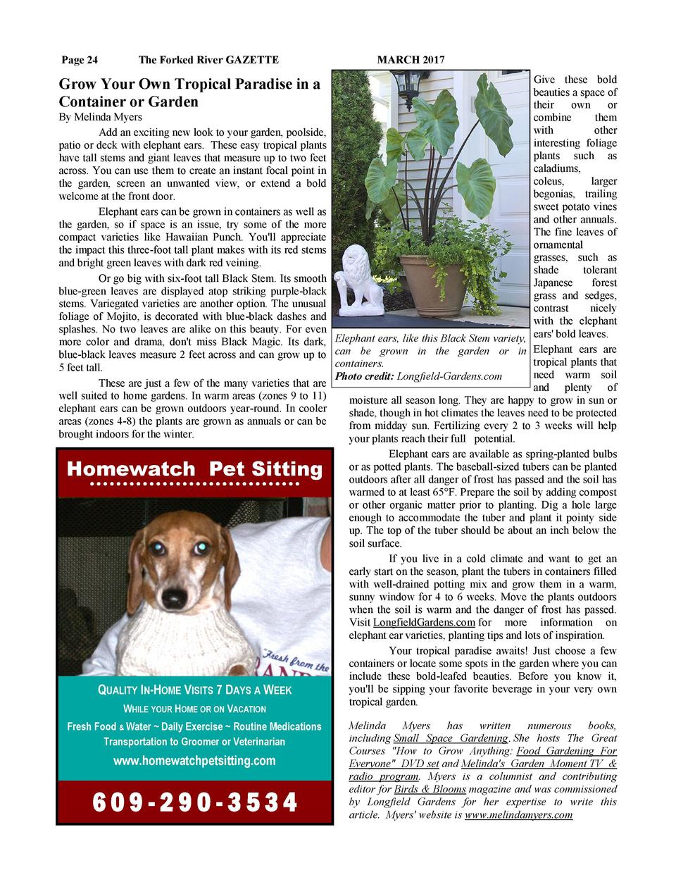 Page 24  The Forked River GAZETTE  Grow Your Own Tropical Paradise in a Container or Garden By Melinda Myers Add an exciti...