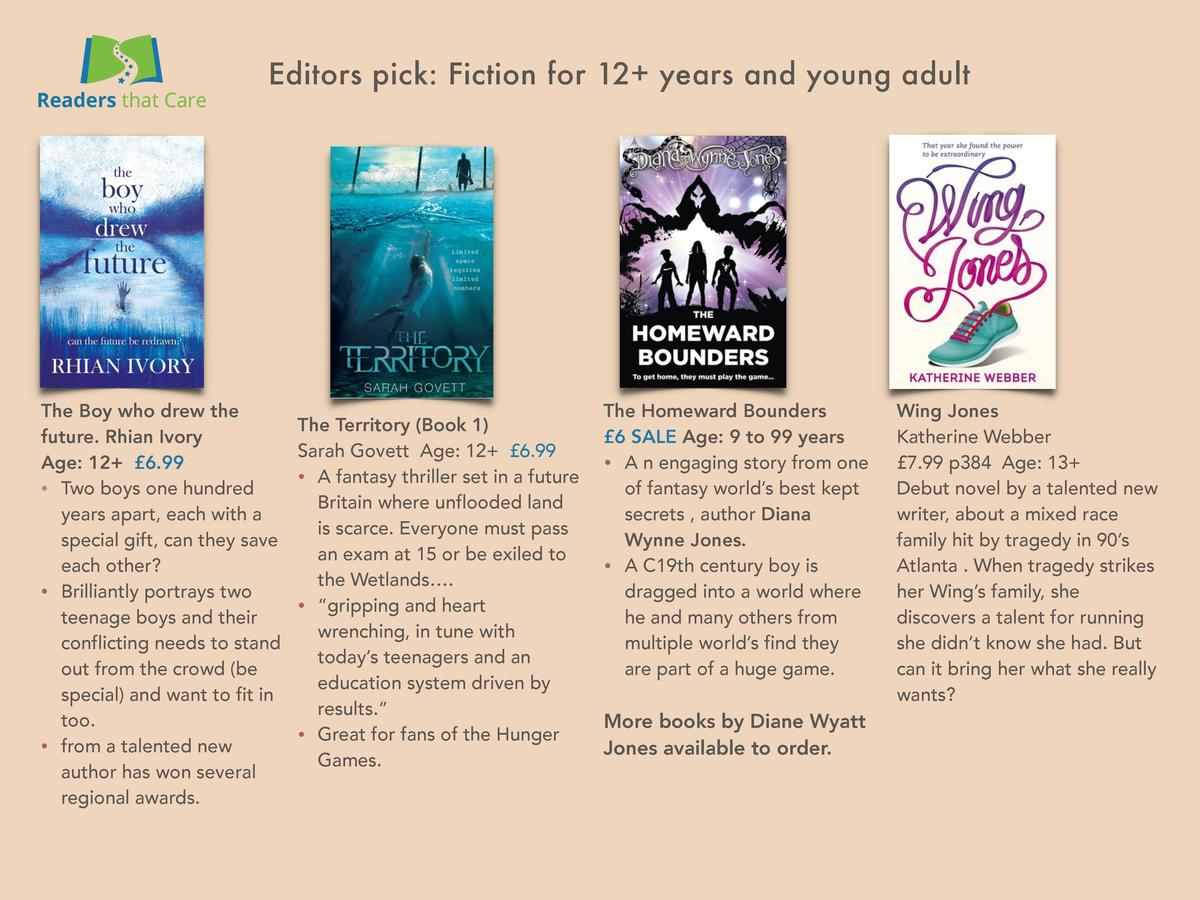 Editors pick  Fiction for 12  years and young adult  The Boy who drew the The Territory  Book 1  future. Rhian Ivory Sarah...
