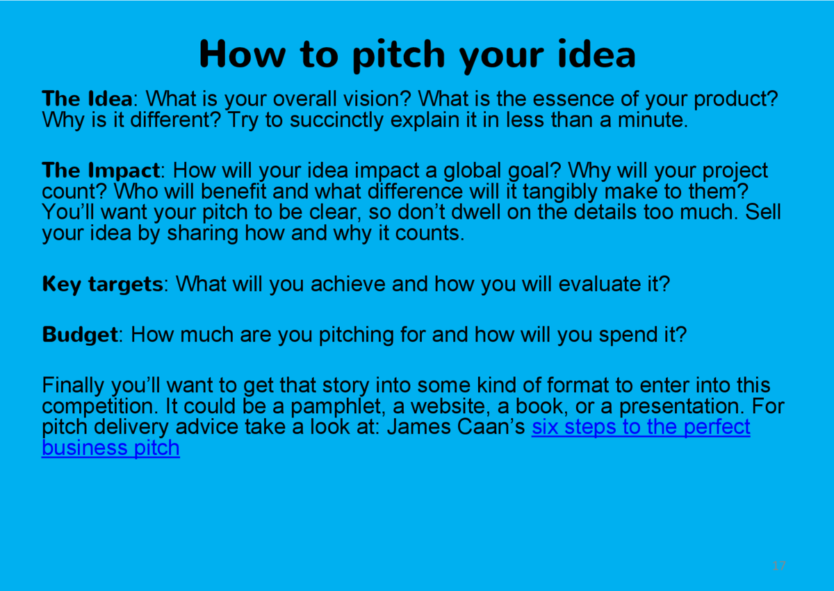How to pitch your idea The Idea  What is your overall vision  What is the essence of your product  Why is it different  Tr...