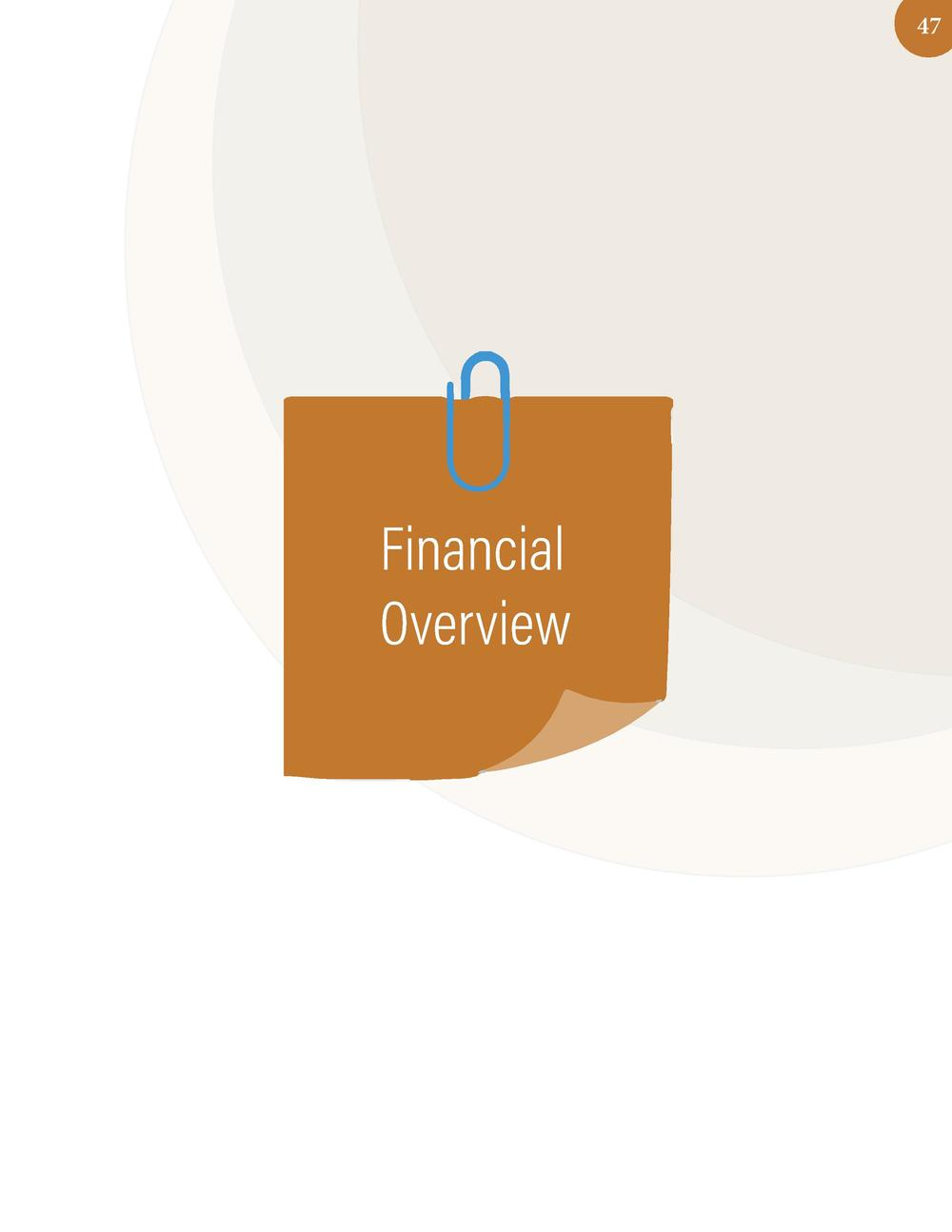 47  Financial Overview