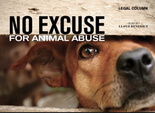 Animal abuse Pamphlet : simplebooklet com