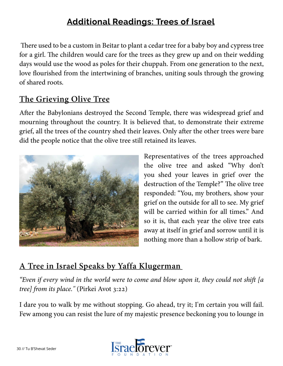 Additional Readings  Trees of Israel  the shade by my side. What causes such confidence  History, my friends--the history ...