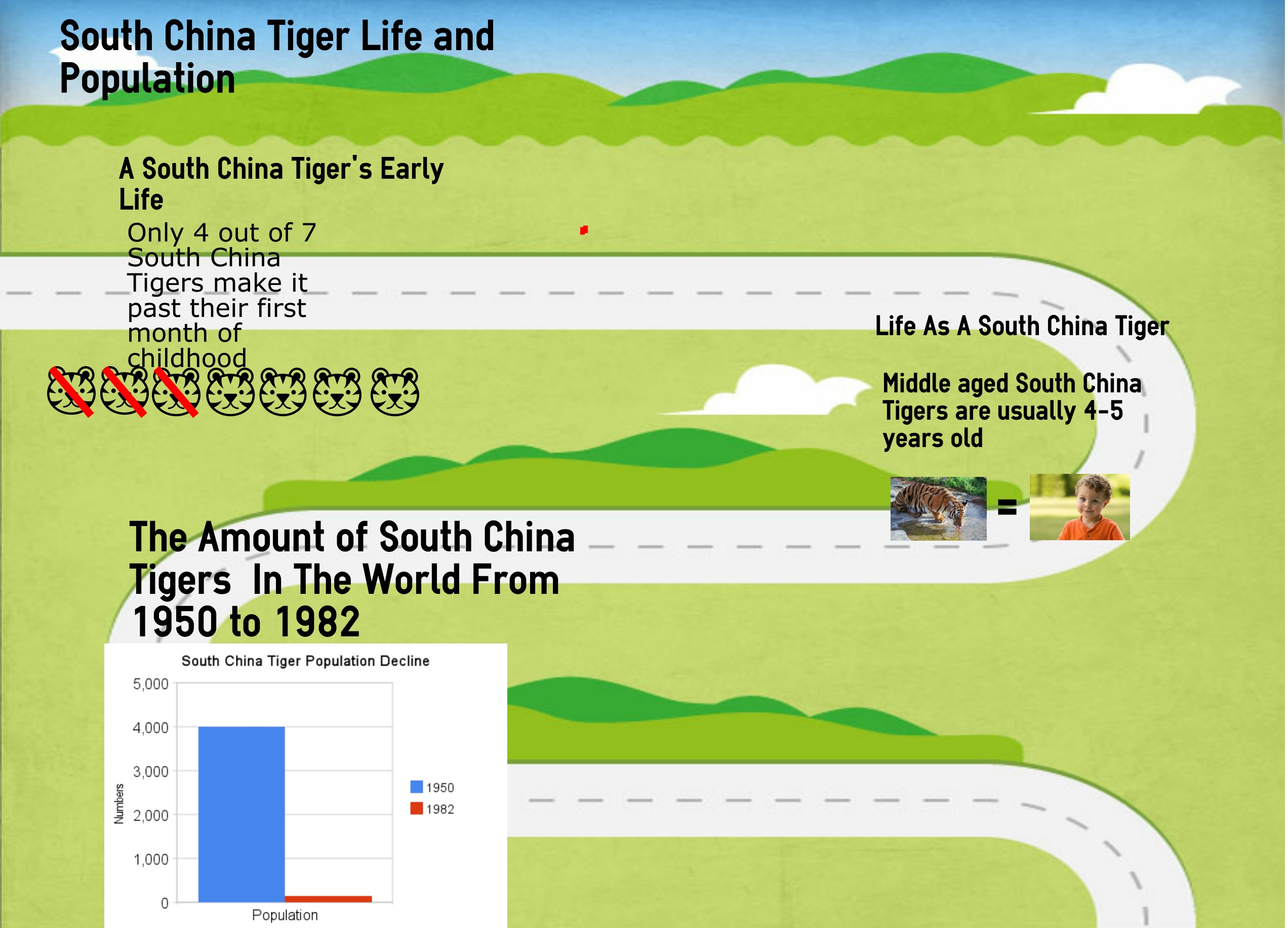 south tiger essay com you go on a vacation trip in the southern part of you walk into a thick forest and see many different animals also you might see lots of water