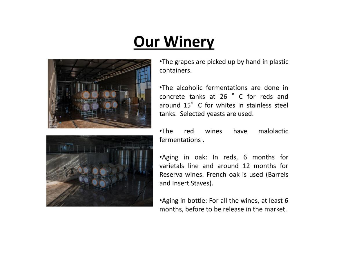Our Winery    The grapes are picked up by hand in plastic containers.    The alcoholic fermentations are done in concrete ...