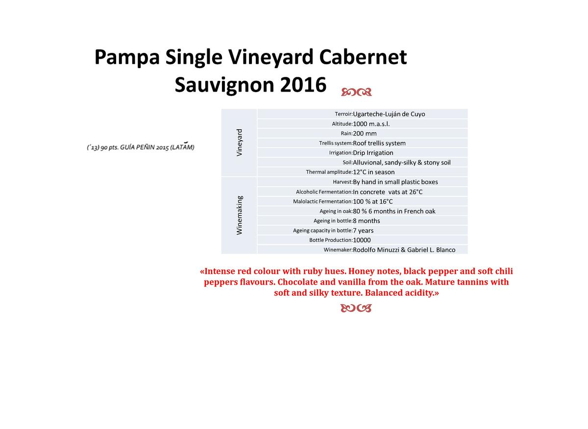 Pampa Single Vineyard Cabernet Sauvignon 2016 cd Terroir Ugarteche-Luj  n de Cuyo  Winemaking  Vineyard  Altitude 1000 m.a...