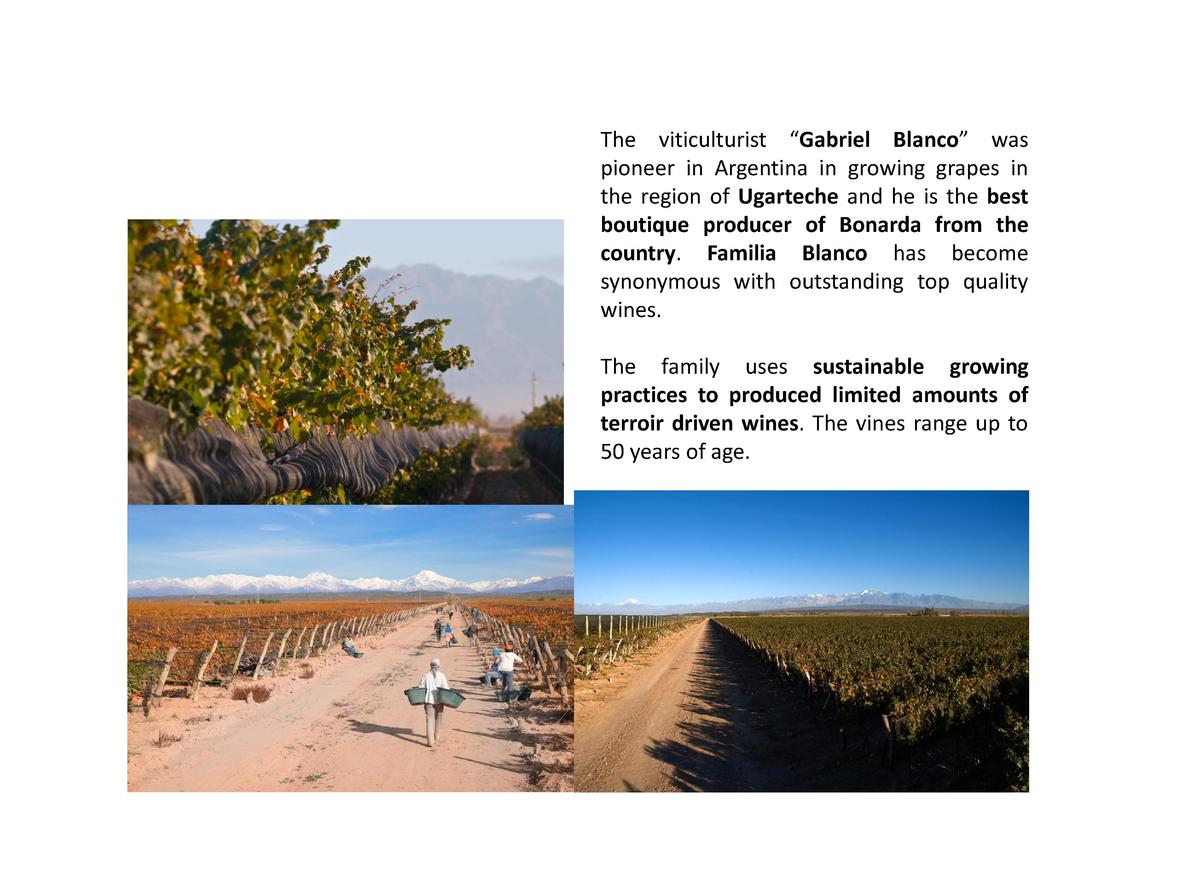 The viticulturist    Gabriel Blanco    was pioneer in Argentina in growing grapes in the region of Ugarteche and he is the...