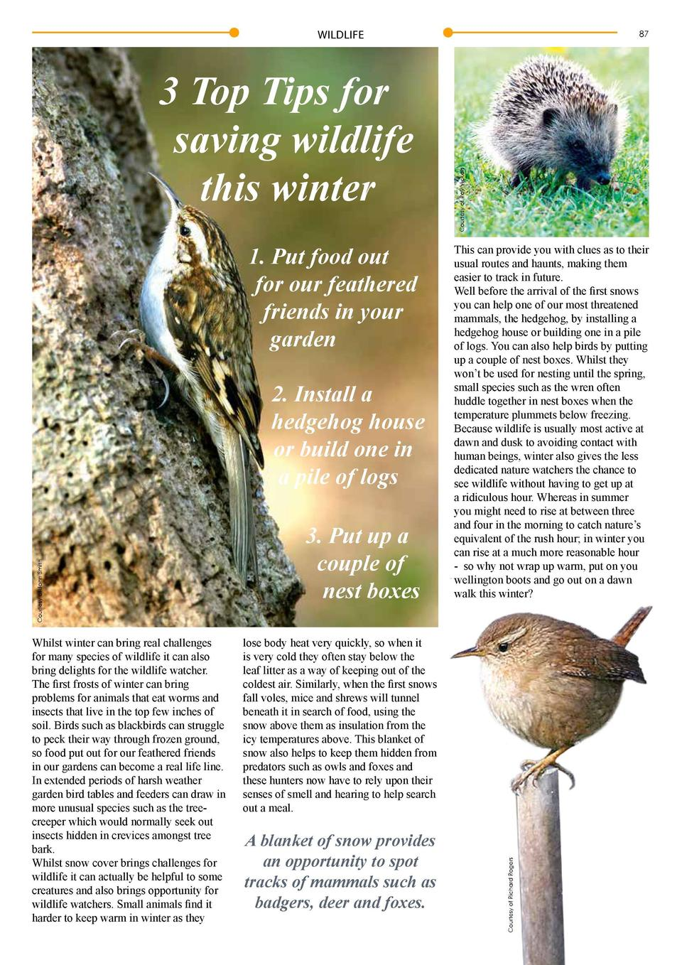 WILDLIFE  1. Put food out for our feathered friends in your garden  Courtesy of Darin Smith  Courtesy of John Smith  2. In...