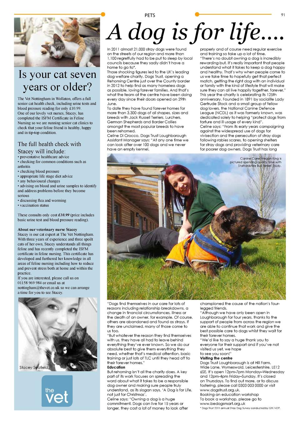 PETS  91  A dog is for life   . Is your cat seven years or older  The Vet Nottingham in Wollaton, offers a full senior cat...