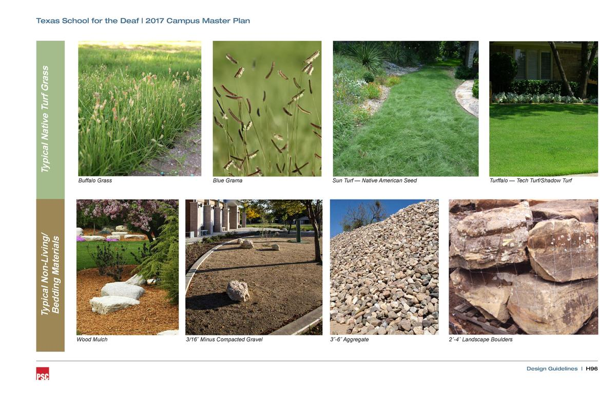 Typical Native Turf Grass  Texas School for the Deaf   2017 Campus Master Plan  Blue Grama  Sun Turf     Native American S...