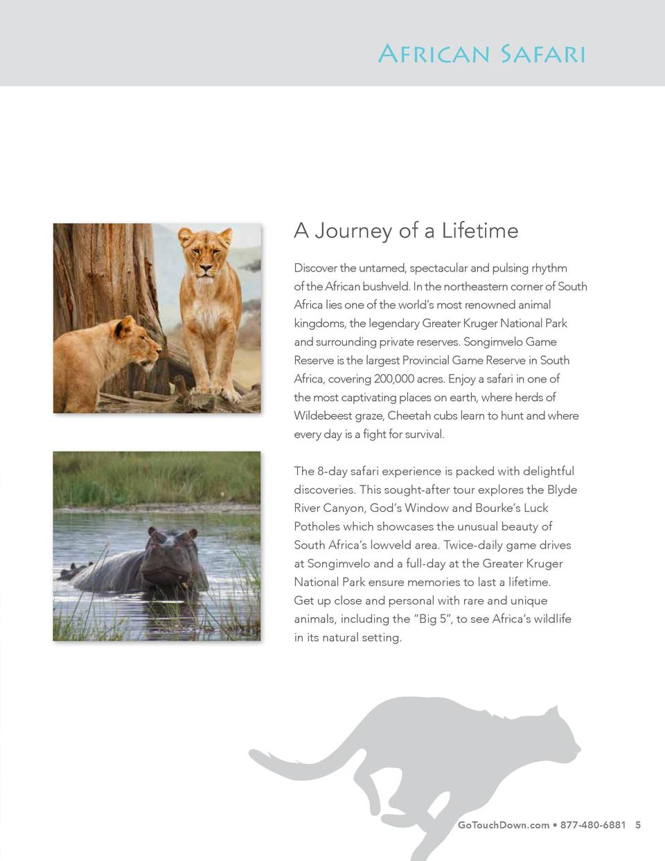 African Safari  A Journey of a Lifetime Discover the untamed, spectacular and pulsing rhythm of the African bushveld. In t...