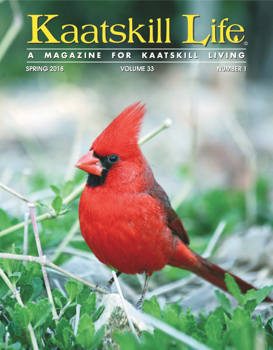 A  MAGAZINE  SPRING 2018  FOR  KAATSKILL  VOLUME 33  LIVING NUMBER 1