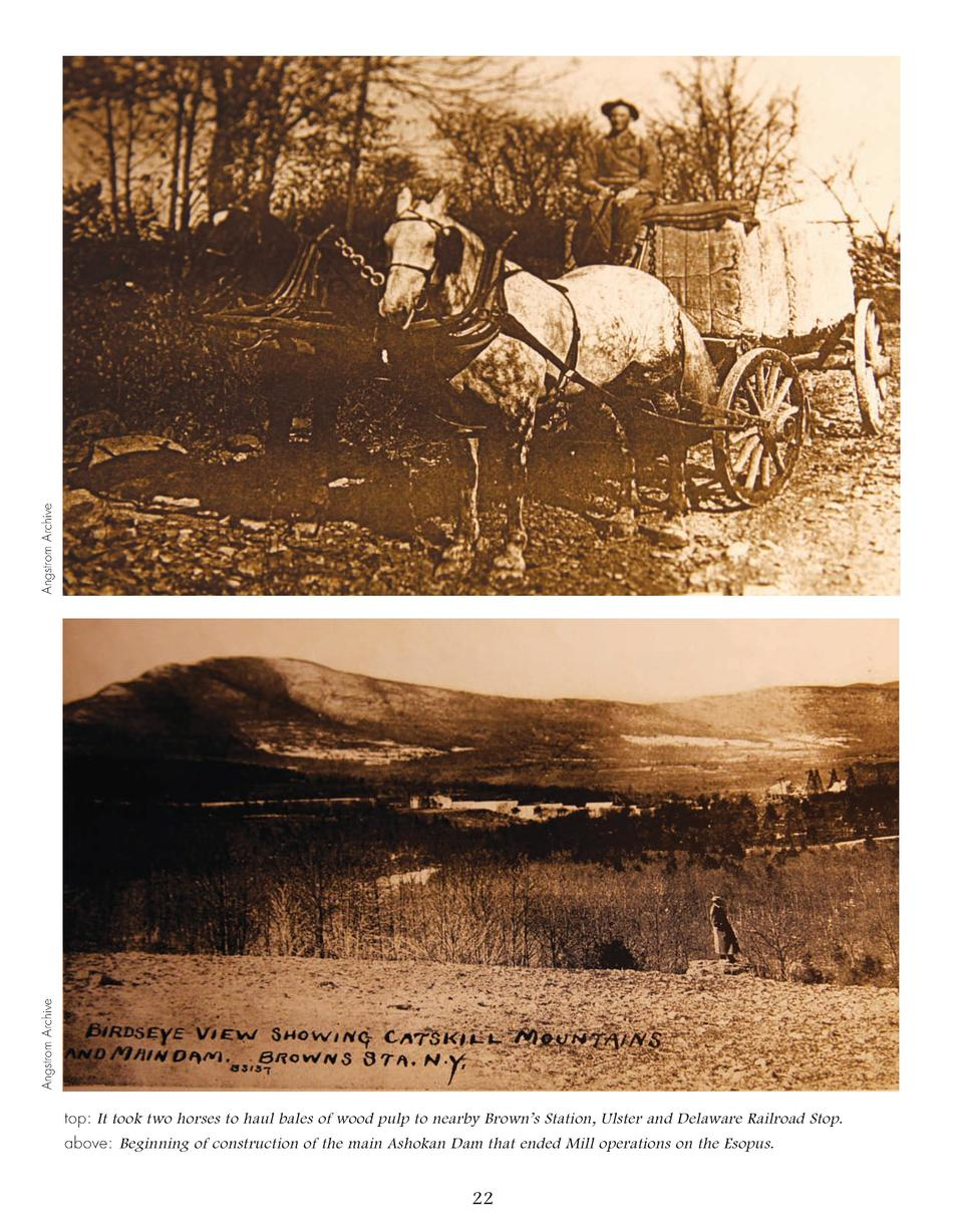 Angstrom Archive Angstrom Archive  top  It took two horses to haul bales of wood pulp to nearby Brown   s Station, Ulster ...