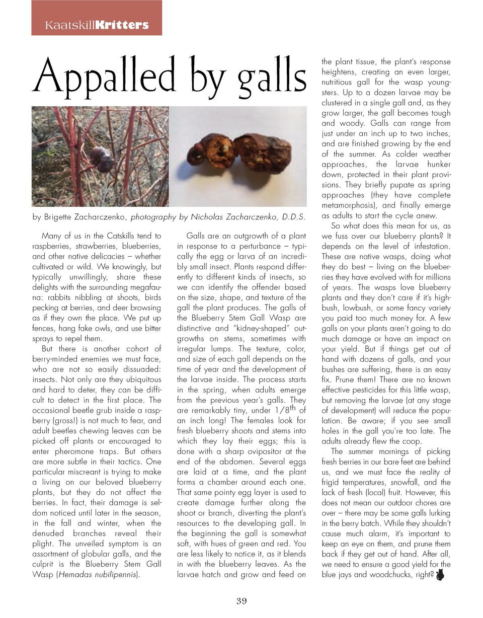 KaatskillKritters  Appalled by galls by Brigette Zacharczenko, photography by Nicholas Zacharczenko, D.D.S. Many of us in ...