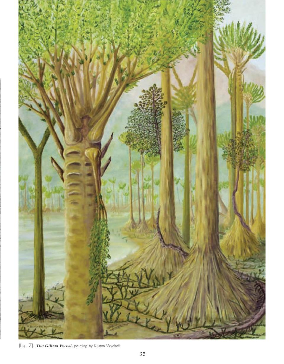 fig. 7   The Gilboa Forest.  painting by Kristen Wychoff  35