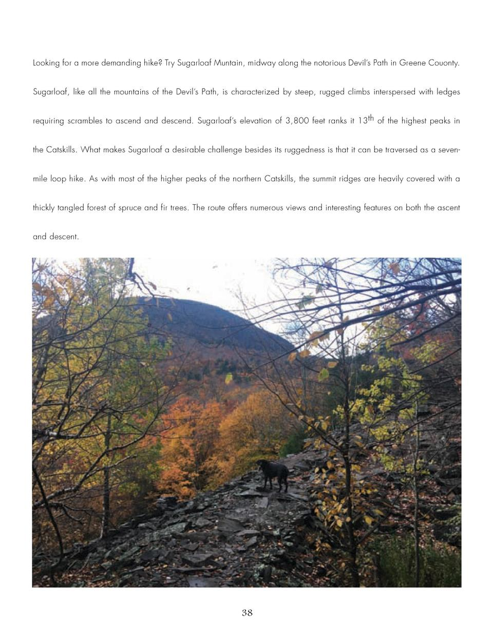 Looking for a more demanding hike  Try Sugarloaf Muntain, midway along the notorious Devil   s Path in Greene Couonty.  Su...