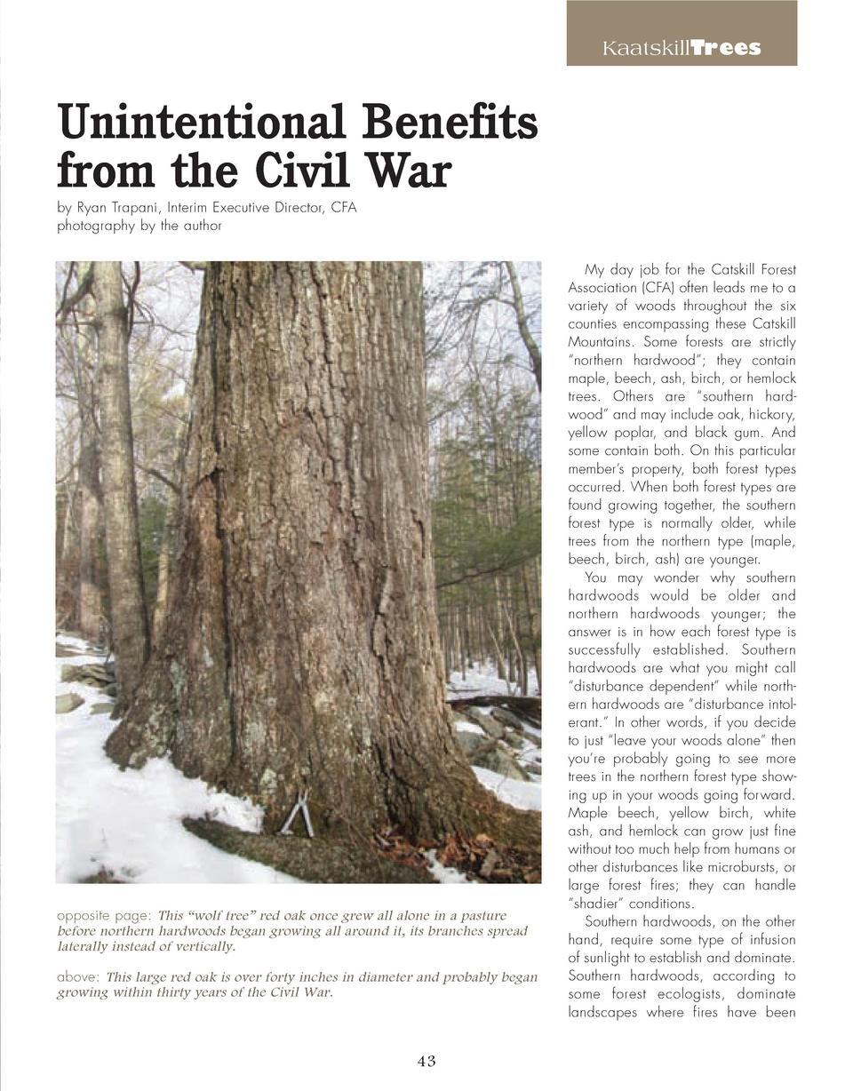 KaatskillTrees  Unintentional Benefits from the Civil War by Ryan Trapani, Interim Executive Director, CFA photography by ...