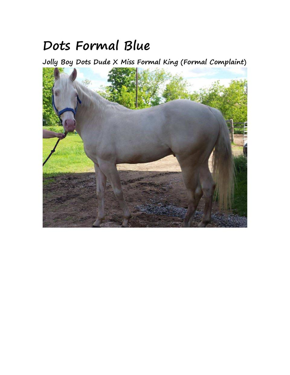 Dots Formal Blue Jolly Boy Dots Dude X Miss Formal King  Formal Complaint