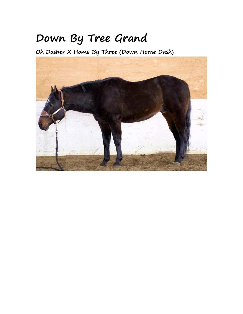 Down By Tree Grand Oh Dasher X Home By Three  Down Home Dash