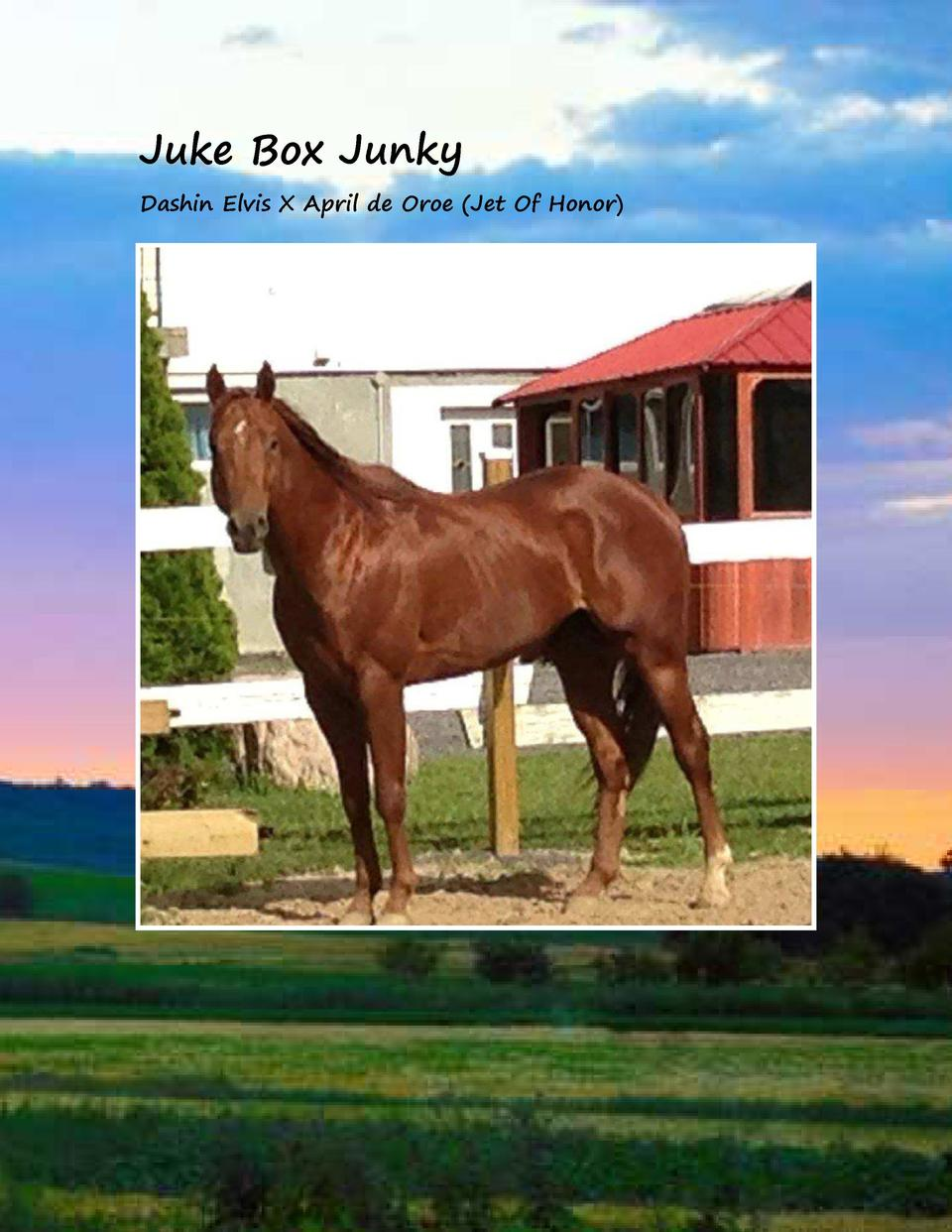 Juke Box Junky Dashin Elvis X April de Oroe  Jet Of Honor