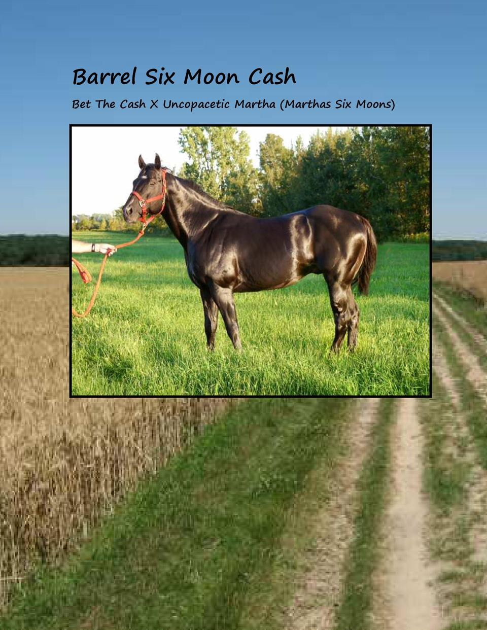 Barrel Six Moon Cash Bet The Cash X Uncopacetic Martha  Marthas Six Moons