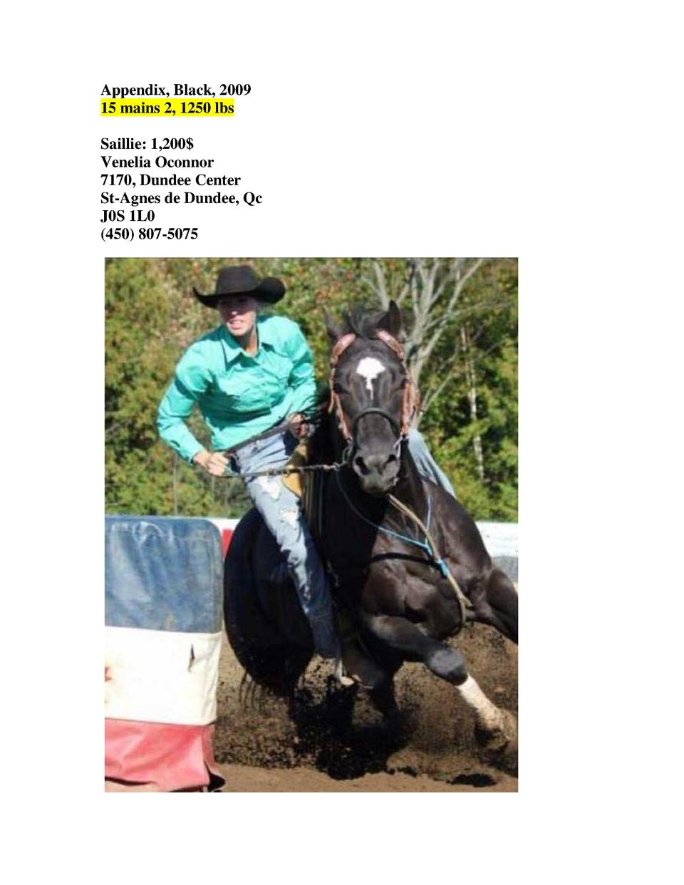 Appendix, Black, 2009 15 mains 2, 1250 lbs Saillie  1,200  Venelia Oconnor 7170, Dundee Center St-Agnes de Dundee, Qc J0S ...